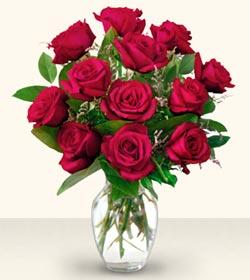 Eskişehir çiçek yolla  10 adet gül cam yada mika vazo da