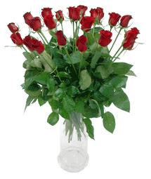 Eskişehir çiçekçi telefonları  11 adet kimizi gülün ihtisami cam yada mika vazo modeli