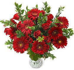 5 adet kirmizi gül 5 adet gerbera aranjmani  Eskişehir hediye çiçek yolla
