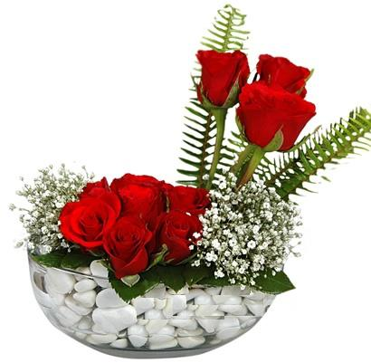 cam içerisinde 9 adet kirmizi gül  Eskişehir çiçek siparişi vermek