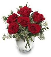 Vazo içerisinde 5 adet kırmızı gül  Eskişehir çiçekçi mağazası
