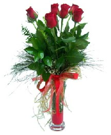 vazo içerisinde 5 kırmızı gül  Eskişehir güvenli kaliteli hızlı çiçek