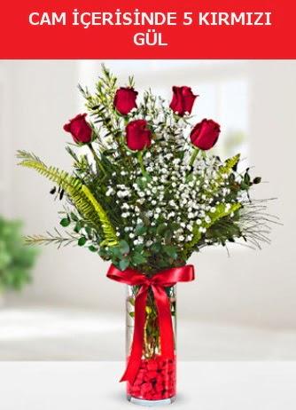 Cam içerisinde 5 adet kırmızı gül  Eskişehir çiçek siparişi sitesi