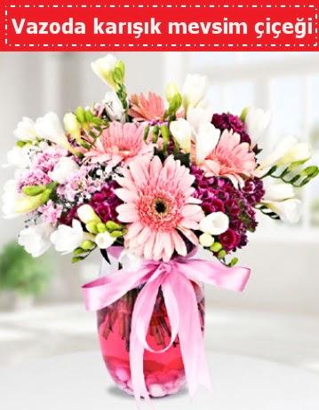 Vazoda karışık mevsim çiçeği  Eskişehir çiçek , çiçekçi , çiçekçilik