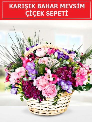 Karışık mevsim bahar çiçekleri  Eskişehir ucuz çiçek gönder