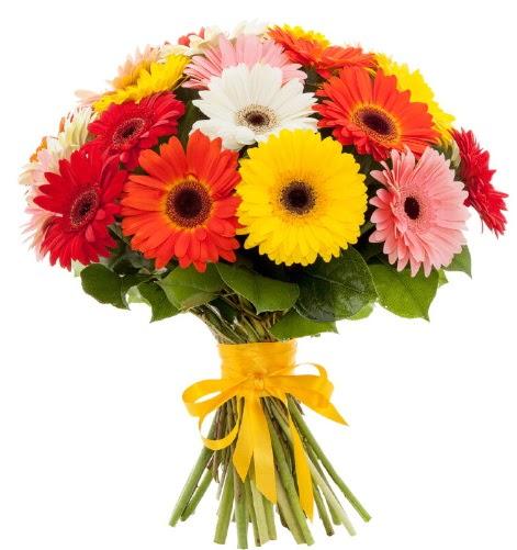 Gerbera demeti buketi  Eskişehir çiçek satışı