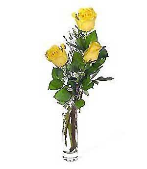 Eskişehir internetten çiçek siparişi  3 adet kalite cam yada mika vazo gül
