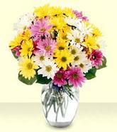 Eskişehir internetten çiçek siparişi  mevsim çiçekleri mika yada cam vazo