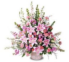 Eskişehir çiçek siparişi sitesi  Tanzim mevsim çiçeklerinden çiçek modeli