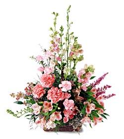 Eskişehir ucuz çiçek gönder  mevsim çiçeklerinden özel