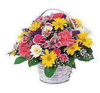 Eskişehir çiçek , çiçekçi , çiçekçilik  mevsim çiçekleri sepeti özel