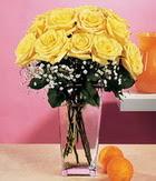 Eskişehir internetten çiçek satışı  9 adet sari güllerden cam yada mika vazo