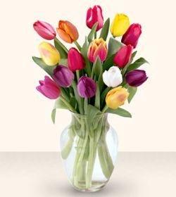 Eskişehir çiçekçiler  13 adet cam yada mika vazoda laleler