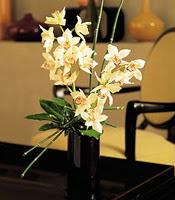 Eskişehir çiçekçiler  cam yada mika vazo içerisinde dal orkide