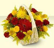 Eskişehir 14 şubat sevgililer günü çiçek  sepette mevsim çiçekleri