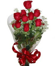 9 adet kaliteli kirmizi gül   Eskişehir online çiçekçi , çiçek siparişi