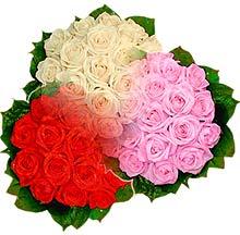 3 renkte gül seven sever   Eskişehir çiçek , çiçekçi , çiçekçilik