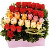 15 adet renkli gül ve cam   Eskişehir çiçekçi mağazası