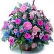 karisik mevsim kir çiçekleri  Eskişehir çiçek gönderme sitemiz güvenlidir