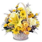 sadece sari çiçek sepeti   Eskişehir çiçek gönderme sitemiz güvenlidir