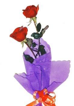 2  adet kirmizi gül buketi   Eskişehir çiçek , çiçekçi , çiçekçilik