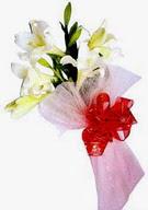 Eskişehir çiçek , çiçekçi , çiçekçilik  ince vazoda gerbera ve ayi
