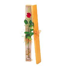 ince  kutuda  1  gül   Eskişehir çiçek yolla