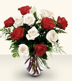 Eskişehir uluslararası çiçek gönderme  6 adet kirmizi 6 adet beyaz gül cam içerisinde