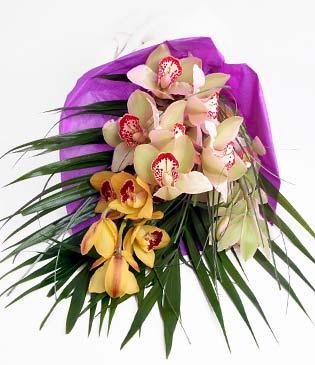 Eskişehir cicekciler , cicek siparisi  1 adet dal orkide buket halinde sunulmakta