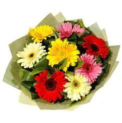 9 adet karisik gerbera demeti  Eskişehir çiçek mağazası , çiçekçi adresleri