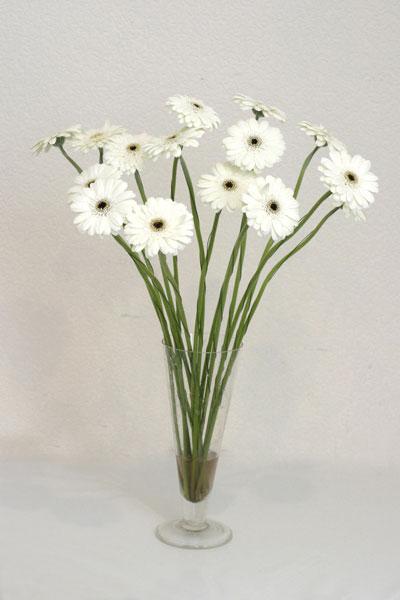 Eskişehir çiçek mağazası , çiçekçi adresleri  cam vazo içerisinde 17 adet sade gerbera