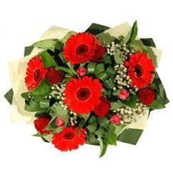Eskişehir ucuz çiçek gönder   5 adet kirmizi gül 5 adet gerbera demeti