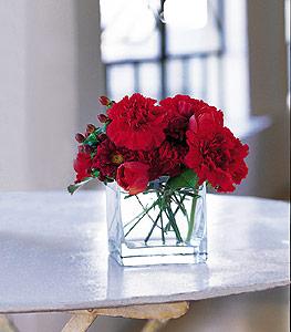 Eskişehir ucuz çiçek gönder  kirmizinin sihri cam içinde görsel sade çiçekler