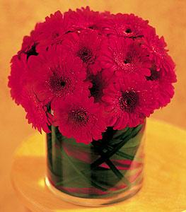 Eskişehir ucuz çiçek gönder  23 adet gerbera çiçegi sade ve sik cam içerisinde