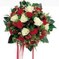 Eskişehir ucuz çiçek gönder  6 adet kirmizi 6 adet beyaz ve kir çiçekleri buket