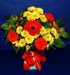 Eskişehir ucuz çiçek gönder  sade hos orta boy karisik demet çiçek