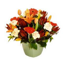 mevsim çiçeklerinden karma aranjman  Eskişehir çiçek yolla , çiçek gönder , çiçekçi