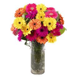 KARISIK GERBERALARDAN CAM VAZO TANZIMI  Eskişehir güvenli kaliteli hızlı çiçek