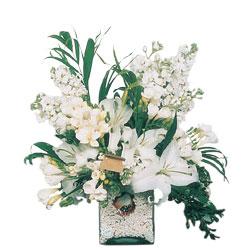 Eskişehir internetten çiçek siparişi  sadece beyazlardan olusmus mevsim cam yada mika tanzim