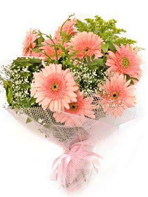 Eskişehir çiçek satışı  11 adet gerbera çiçegi buketi