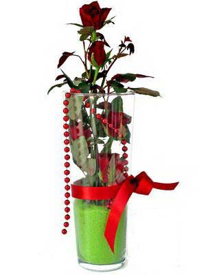 Eskişehir online çiçek gönderme sipariş  Cam yada mika içerisinde 9 adet kirmizi gül - sevdiklerinize özel