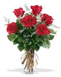 Eskişehir çiçek gönderme sitemiz güvenlidir  7 adet kirmizi gül cam yada mika vazoda sevenlere