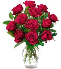 Eskişehir online çiçek gönderme sipariş  1 düzine kirmizi gül sevenlere özel vazo gülleri