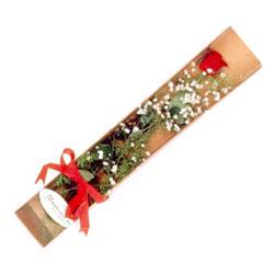 Eskişehir çiçek , çiçekçi , çiçekçilik  Kutuda tek 1 adet kirmizi gül çiçegi