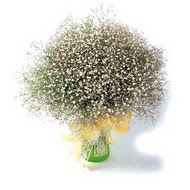 Eskişehir çiçek mağazası , çiçekçi adresleri  cam yada mika vazo içerisinde cipsofilya demeti