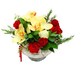 Eskişehir çiçek gönderme  1 adet orkide 5 adet gül cam yada mikada