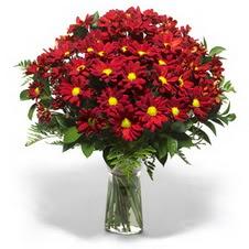 Eskişehir çiçek yolla  Kir çiçekleri cam yada mika vazo içinde