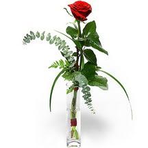Eskişehir 14 şubat sevgililer günü çiçek  Sana deger veriyorum bir adet gül cam yada mika vazoda