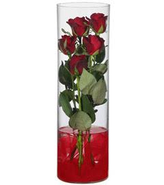 cam içerisinde 7 adet kirmizi gül  Eskişehir çiçekçiler