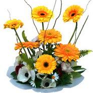 camda gerbera ve mis kokulu kir çiçekleri  Eskişehir çiçekçi telefonları